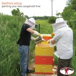 Painting your Beehive
