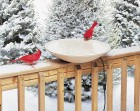 Deck-Mounted Heated Bird Bath