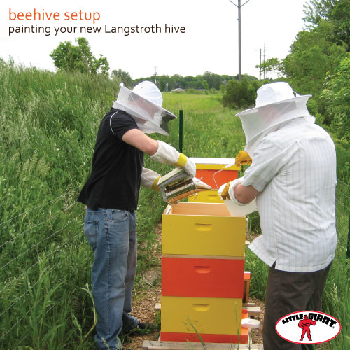 Little-Giant-Painting-your-Hive
