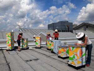 MIA Rooftop Apiary